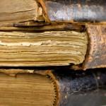 Fossilized Error Correction TESOL teaching